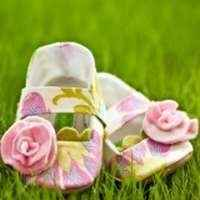 Geranium Baby and Toddler Girls Shoes (American Made)