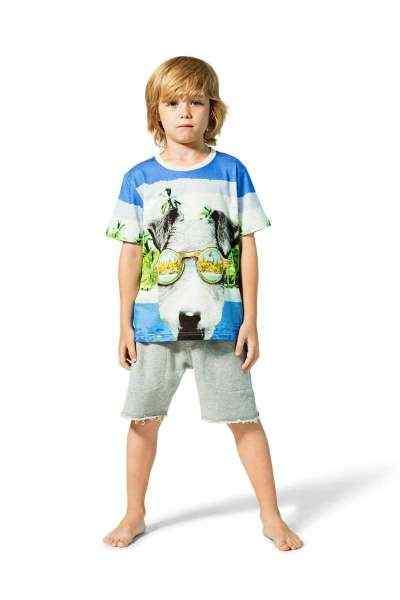 Dreaming Short Sleeve Big Boys Dog Tee (Organic Cotton)