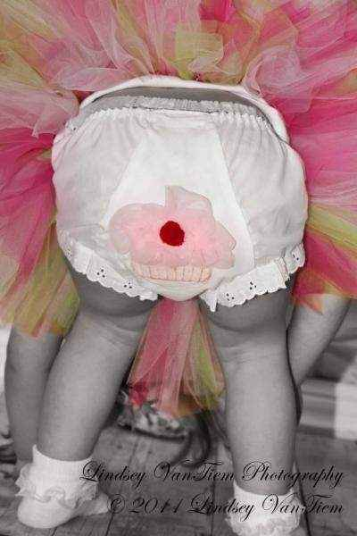Cupcake Baby & Toddler Girls Birthday Tutu Bloomers & Diaper Cover