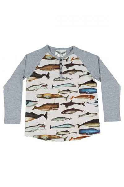 Whale Print Long Sleeve Big Boys Henley Shirt (Organic Cotton)